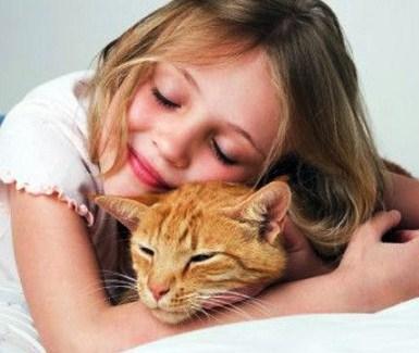 аллергия в доме из поревита причины